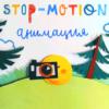 Как научиться создавать ролики в технике stop motion: хорошие онлайн-школы и курсы