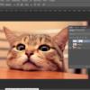 Как научиться работать в Adobe InDesign: подборка онлайн-школ, бесплатных уроков и программ обучения