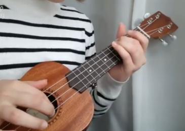 Как научиться играть на гавайской гитаре (укулеле): хорошие онлайн-уроки, youtube-каналы и бесплатные ресурсы